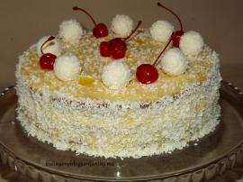 Tort Raffaello